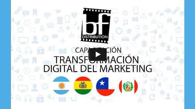 fondo-yt-BF-Distribution-in-company-social-marketing-academy